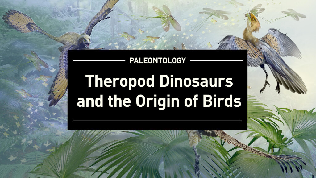 Theropod---Title-Card