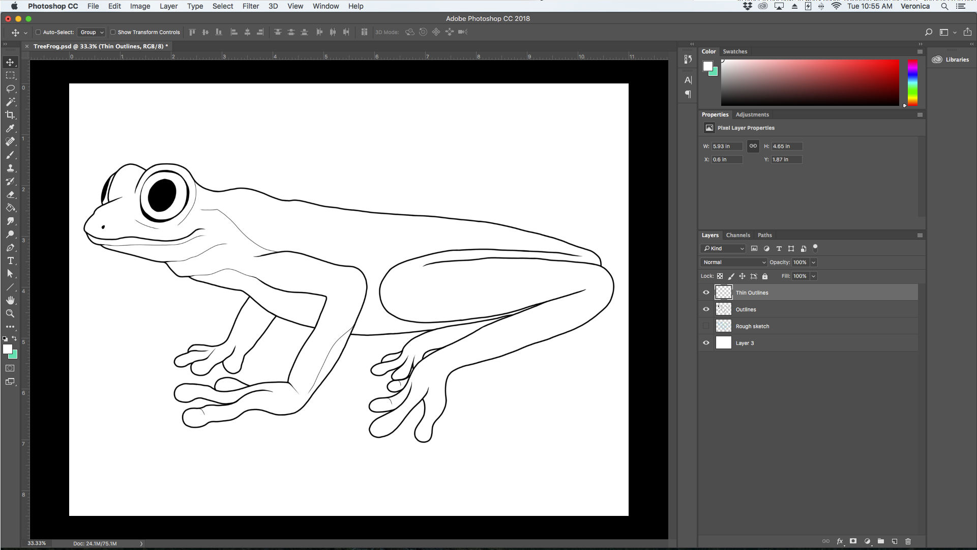 TreeFrog-Outlines-1