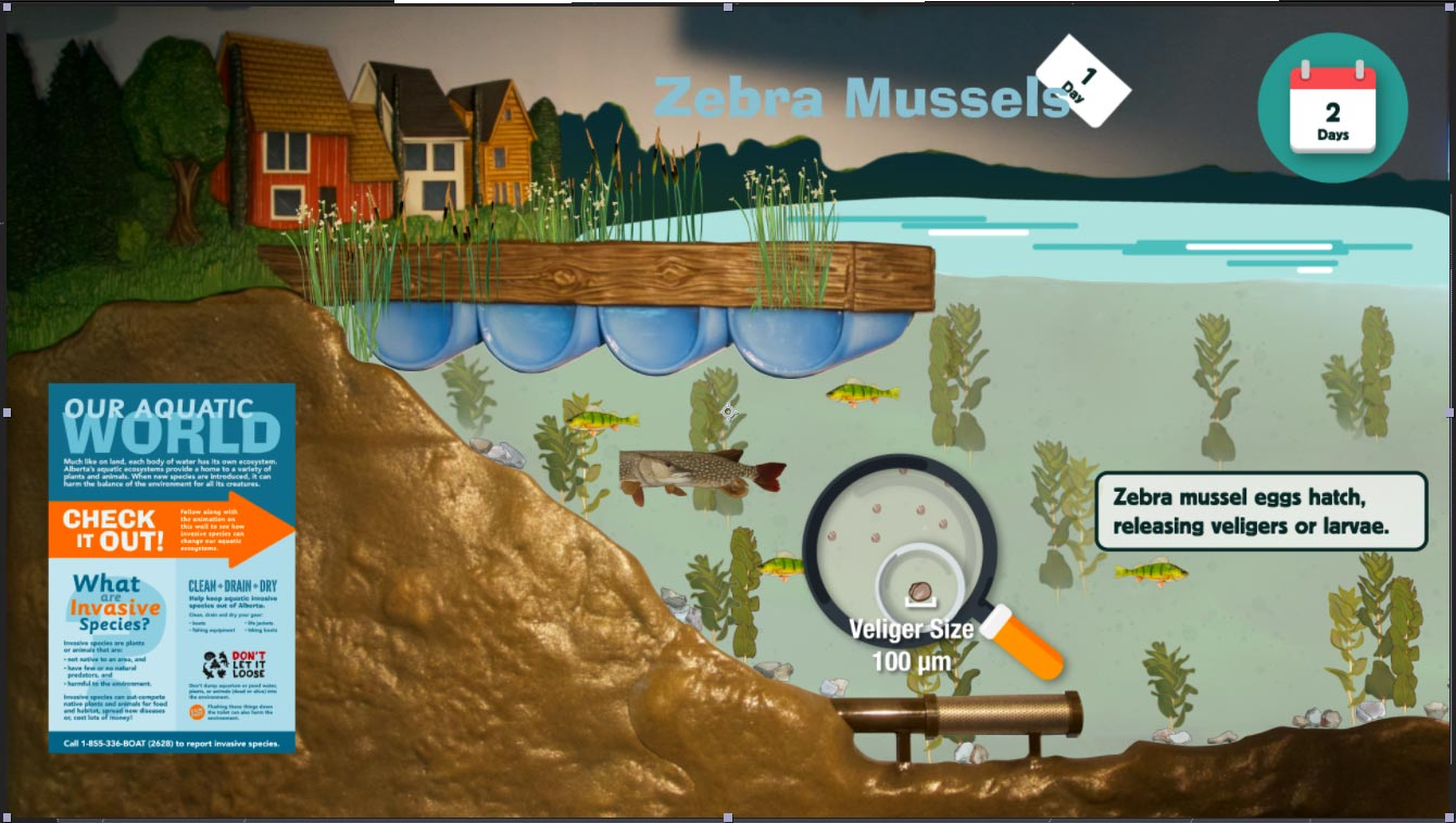 AIS-mussels-overlay