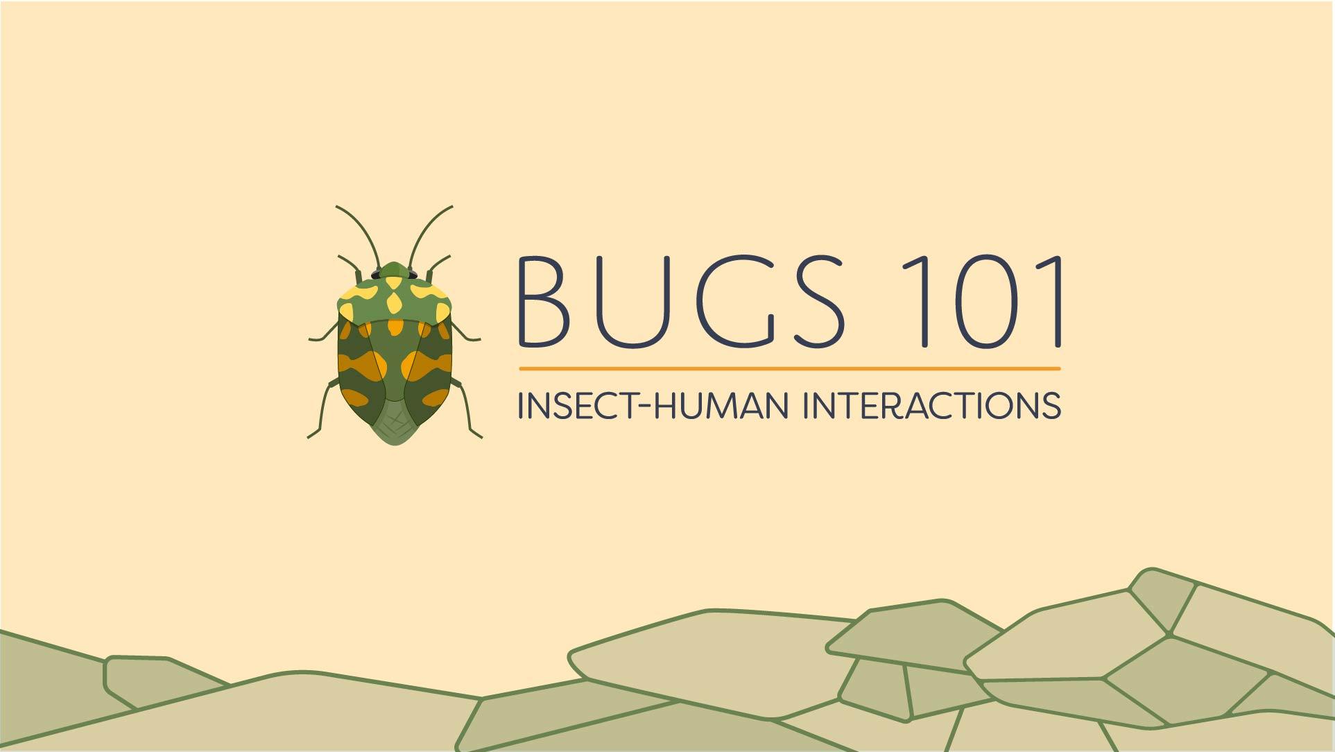 Bugs-1